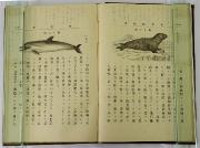 113 明治時代に使われた教科書6冊 動物学