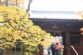 本山寺山門(高25回)